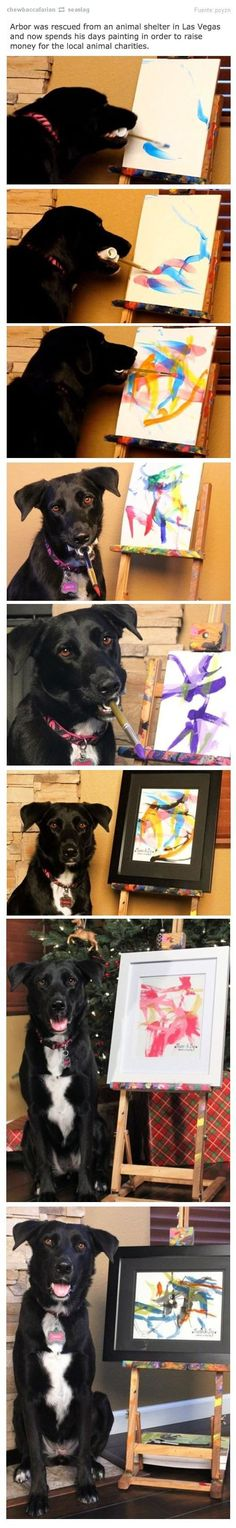 Rescue dog turned painter