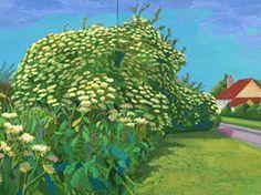 David Hockney Elderflower Blossom, Kilham, July, 2006 oil on 2 canvases Overall: 48 x 72 in. x cm) Framed: 49 x 73 in. x cm) Private collection David Hockney Landscapes, David Hockney Artist, David Hockney Paintings, Robert Rauschenberg, Edward Hopper, Mondrian, Kandinsky, Pop Art Movement, Make Pictures