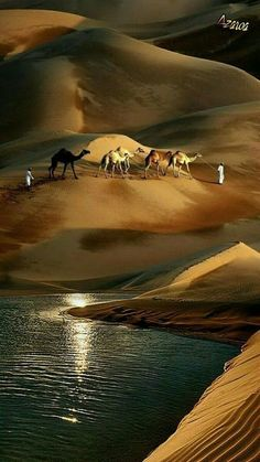 Wonders created by nature and by human hands, are all here. Beautiful World, Beautiful Places, Beautiful Pictures, Landscape Photography, Nature Photography, Stunning Photography, Deserts Of The World, Image Nature, Deserts