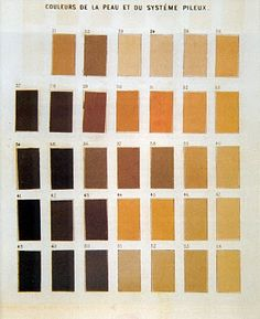 CHAUDRON: Paul Broca - Eye and Skin color charts.