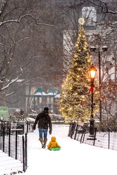 Christmas tree at Madison Square Park by Javan Ng Photography - New York City Feelings Christmas Scenes, Christmas Colors, Christmas Photos, Christmas Time, Merry Christmas, New York Noel, New York City Christmas, Cities, Instagram Christmas