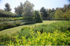 Ο Κήπος του Μεγάρου