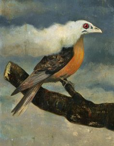 """""""Saving Our Birds"""" (op-ed) (via NY Times) (29 August 2014) """"Today the tragedy of the passenger pigeon exhorts us to have the courage to redouble these efforts in protecting what remains of nature's abundance."""