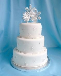 Google Image Result for http://www.cakesbysueonline.com/_/rsrc/1261539939098/Snow-large.jpg%3Fheight%3D420%26width%3D336