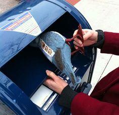 Uma forma criativa de mandar cartas, na forma de um pombo!