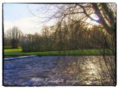 Spring in Doneraile March 2018 Professional Wedding Photography, Cork Ireland, March, River, Spring, Outdoor, Outdoors, Outdoor Games, The Great Outdoors