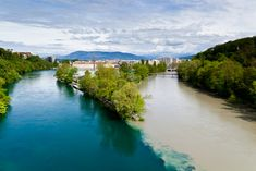 Jonction in Geneva, Switzerland, where the two rivers Rhone and Arve meet. Two Rivers, May, Natural Beauty, Leaves, Explore, Geneva Switzerland, Water, Outdoor, Bucket