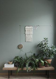 creative wall hallway with plants decoration