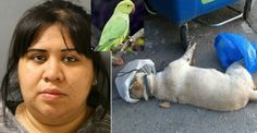 Monster Woman Forces A Bird Down Her Dog's Throat Using A Metal Curtain Rod