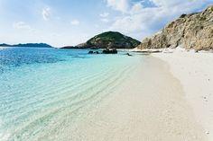 Beach adventures #paradise #adventure #tropical #beach #ocean #L4L #photooftheday #outdoor #amazing