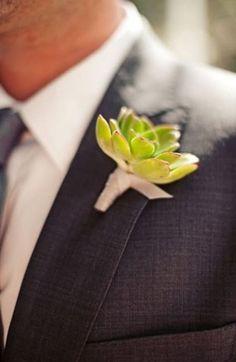 Wedding Decor - Succulents