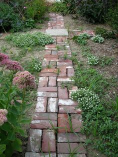 Do It Yourself Garden Paths | path I put in last summer.