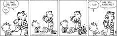 Calvin and Hobbes  1/8/14