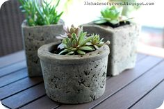 DIY Cement Planters... tutorial