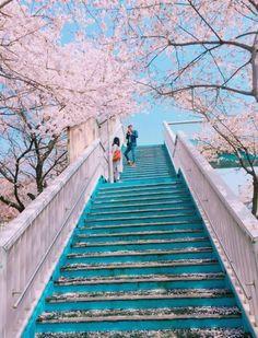 Travel aesthetic korea 67 Ideas for 2019 Aesthetic Korea, City Aesthetic, Japanese Aesthetic, Travel Aesthetic, Aesthetic Style, Nature Aesthetic, Aesthetic Beauty, Aesthetic Photo, Aesthetic Dark