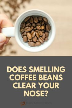 Perhaps you've been in the perfume store sampling an array of fragrances and the salesperson has offered you coffee beans to sniff in between perfumes? Next time, you'll know why. Generally, coffee beans are used in perfume stores to awaken our nasal receptors, acting as what is referred to as an olfactory palate cleanser. #coffee Coffee Cream, Coffee Type, Black Coffee, Types Of Coffee Beans, Different Types Of Coffee, Coffee Canister, Coffee Spoon, Coffee Works, Palate Cleanser