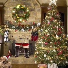 Merry Christmas Gif, Christmas Videos, Snoopy Christmas, Christmas Scenes, Christmas Pictures, Christmas Gifts, Christmas Decorations, Xmas, Christmas Tree