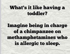 Toddler Jokes Only Parents Will Understand … – Humor Toddler Jokes, Mantra, Memes Spongebob, Mommy Humor, Funny Quotes, Life Quotes, Funny Gifs, Haha, Parenting Memes