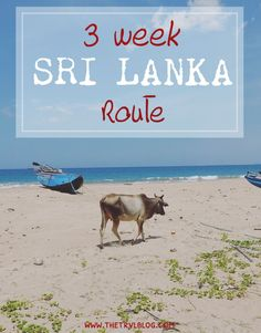 3 Week Sri Lanka Route