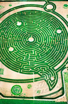 Aerial view of labyrinth at park. Rignac. Touraine, Val-de-Loire. France