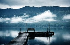 Lake Quinault, Olympic Peninsula. Washington state. By sparth