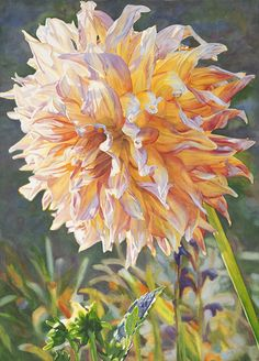 Life in Full Color - Watercolors by Cara Brown - Touched by the Sun