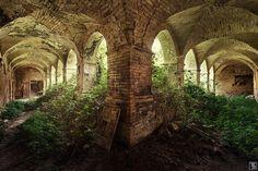 cloister garden by Sven Fennema on 500px
