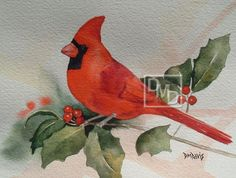cardinal on holly--Diana M Davis  beautiful work - but not mine (different middle initial!!) :~D