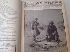 Rare Vintage Book American Agriculturist 1888 by ValhallaFineArts