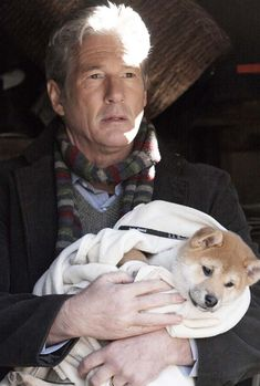 Baby Animals, Funny Animals, Cute Animals, Hachi A Dogs Tale, A Dog's Tale, Akita Dog, Loyal Dogs, Richard Gere, Dog Stories