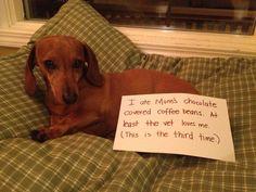 Skittles-shaming