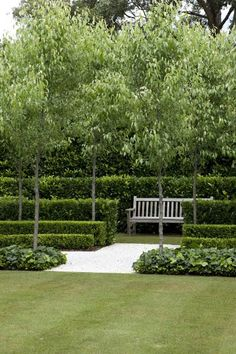 Layered hedges surround a garden bench to create a relaxing garden space