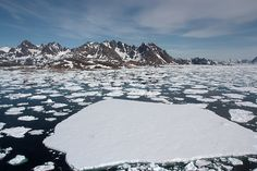 Arctic Sea Ice Loss in 2013: Don't Ignore the Big Picture