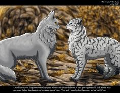Stormfur and Feathertail by Vialir on deviantART