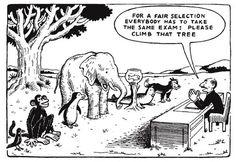 Como ensinar para um grupo de alunos com habilidades distintas? - Educação Integral