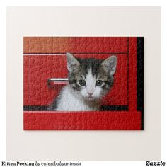 Kitten Peeking Jigsaw Puzzle I Love Cats, Cute Cats, Adorable Kittens, Kittens Cutest Baby, Kitten Images, Cat Care Tips, Pet Day, Make Your Own Puzzle, Custom Gift Boxes