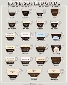 Visual reference for ingredient ratios