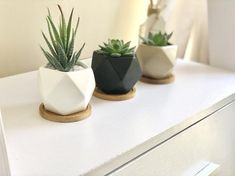 Your place to buy and sell all things handmade Small Cactus, Small Potted Plants, Succulent Pots, Succulents, Wine Gift Baskets, Basket Gift, Concrete Pots, Concrete Planters, Creation Deco