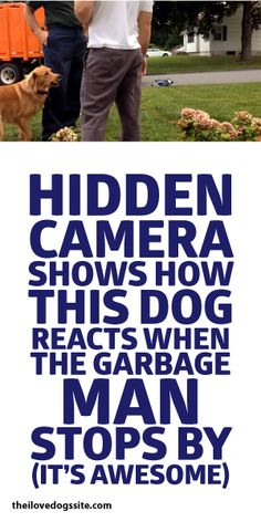 Hidden Camera Shows How This Dog Reacts When The Garbage Man Stops By - It's AWESOME!