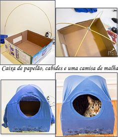 All You Must Know About Cat Toilet Training Diy Cat Tent, Cat Toilet Training, Cat House Diy, Cat Hacks, Cat Room, Pet Furniture, Cat Crafts, Pet Beds, Diy Stuffed Animals