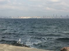 Istanbul Istanbul, Beach, Water, Outdoor, Gripe Water, Outdoors, The Beach, Beaches, Outdoor Living