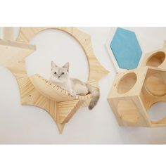 Luxury Dog House, Cat Furniture, Furniture Ideas, Cat Shelves, Natural Instinct, Cat Supplies, Cat Scratching, Wall Mount, Solar