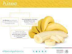 Plátano. SAGARPA SAGARPAMX #MéxicoAgroPotencia