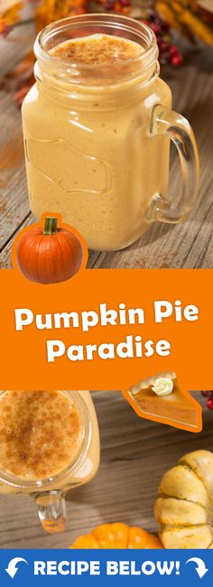 1 Scoop of 310 Shake Vanilla, 1 Cup of Milk, Almond Milk, or Coconut Water, 1/2 cup canned pumpkin, 1 tsp. pumpkin spice, 1/2 cup of ice cubes & Blend! :: Look for top meal replacement shakes to use in the recipe by visiting the link! ::