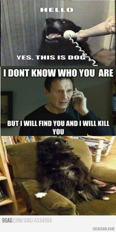 Dog vs. Liam Neeson His face at the end is just freakin' hilarious!
