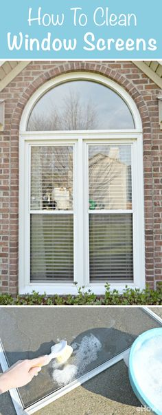 Cleaning window screens can be such a pain! This tutorial shows you how to do it without the headache: http://www.ehow.com/how_2311918_clean-window-screens-easy-way.html?utm_source=pinterest.com&utm_medium=referral&utm_content=freestyle&utm_campaign=fanpage