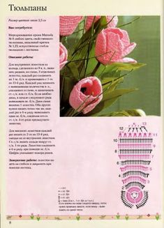 Crochet con amor y cariño!!!: Flores, deleitan la vista, realmente hermosas.