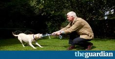 Professor John Bradshaw is leading a revolution in the study of canine behaviour. 'Dogs don't want to control people, they want to control their own lives,' he tells Kate Kellaway