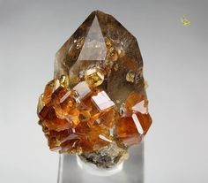 Gem Garnet var. Spessartine Quartz var. | #Geology #Geology #GeologyPage #Mineral Locality: Tongbei Yunxiao Co. Zhangzhou Prefecture Fujian Province China Size: 19 x 13 x 14mm Photo Copyright Quebul Fine Minerals Geology Page www.geologypage.com