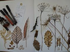 finds in sepia ink......sepia can be a very effective ink.....another dimension.
